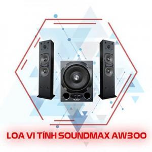 X AW300